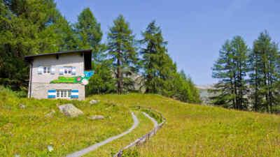 Ausstellung Glocknerwiesen