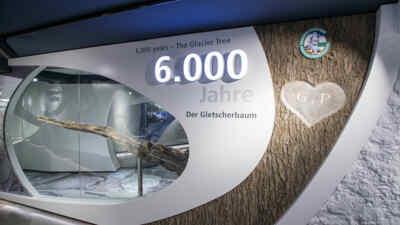 Exhibtion Glacier Life