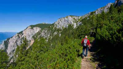 Wanderer in den Wäldern Kärntens