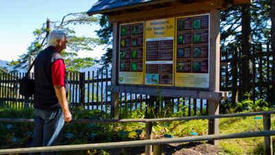 Mann vor dem Infoschild im Alpengarten Dobratsch